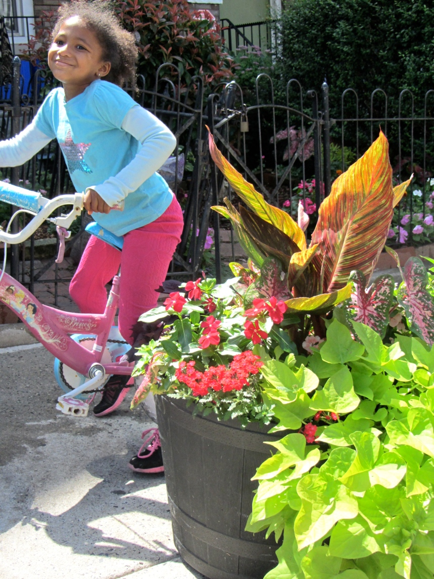 JuJu biking by Aine's planter.