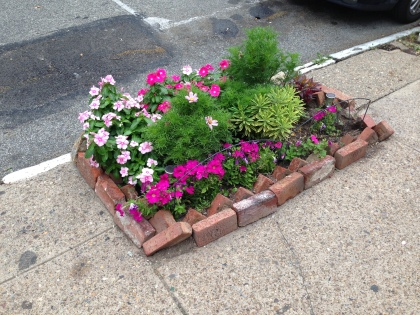 Build a garden in a broken sidewalk