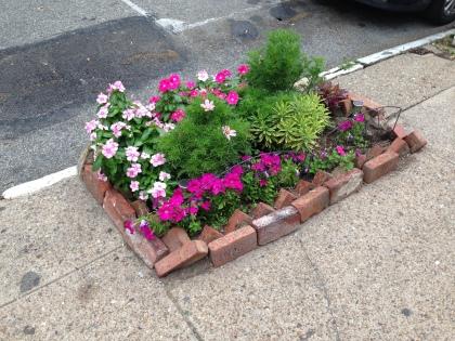Build a garden in a broken sidewalk