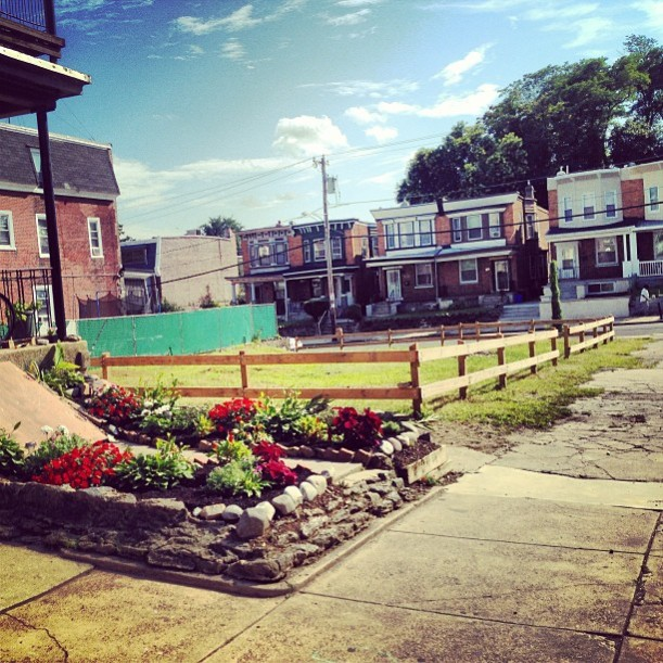Herb's garden in full bloom and the vacant lots in 2013.